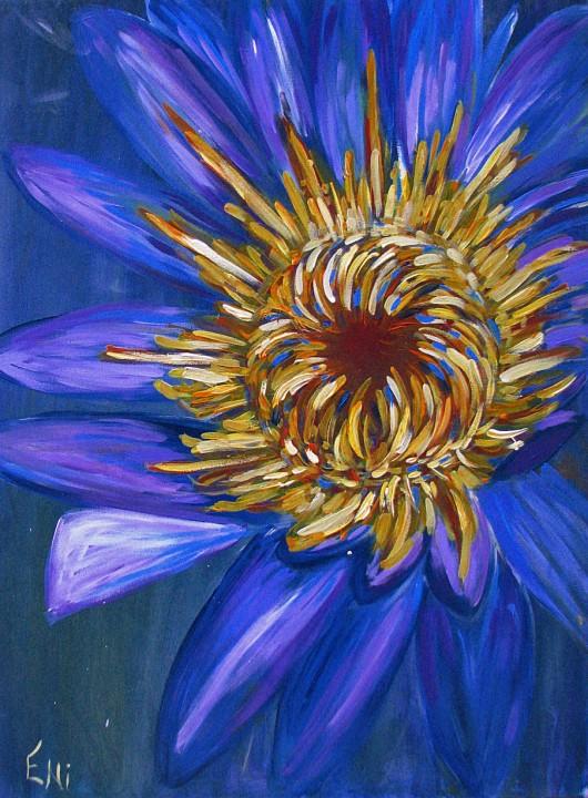 Explozie-florala.jpg